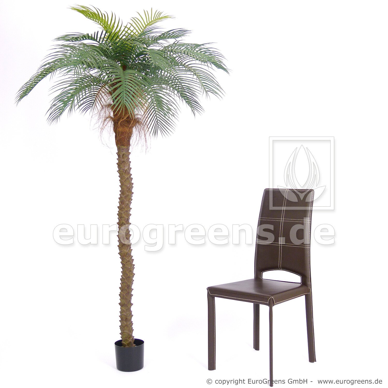 Umelá palma Senegal odolná voči poveternostným vplyvom 200 cm