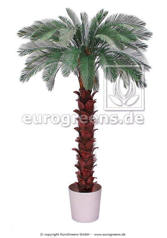 Umělá palma Cycas 300 cm