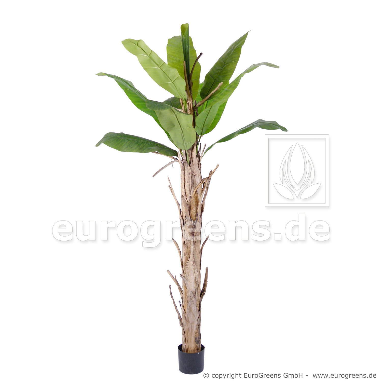 Umelá palma Banánovník 220 cm