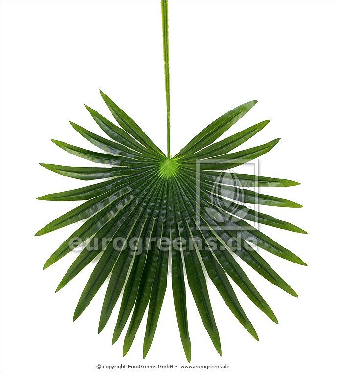 Umelý palmový list  90 cm