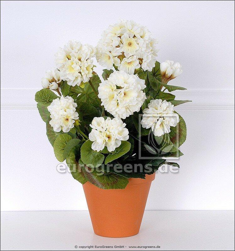 Umělá rostlina Pelargónie bílá 40 cm