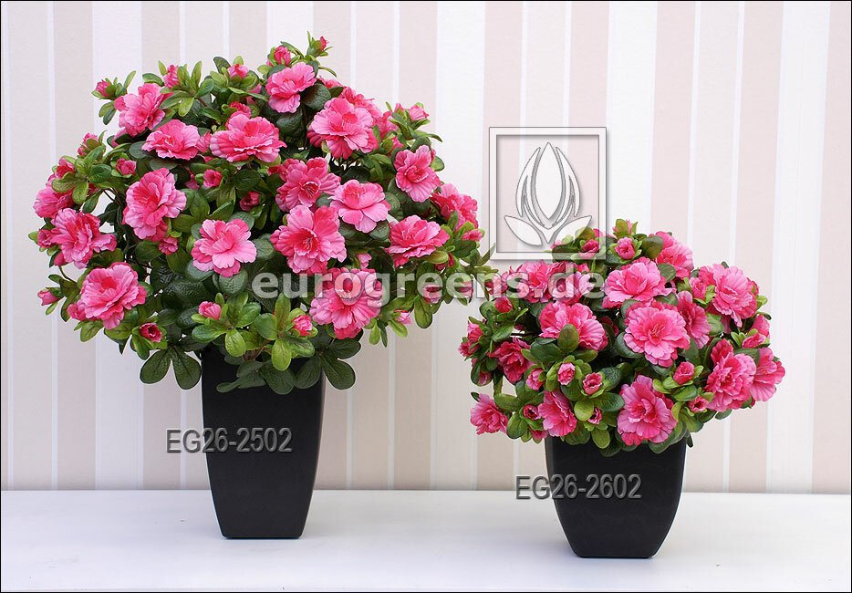 Umělá kytice Belgická Azalka růžová 25 cm