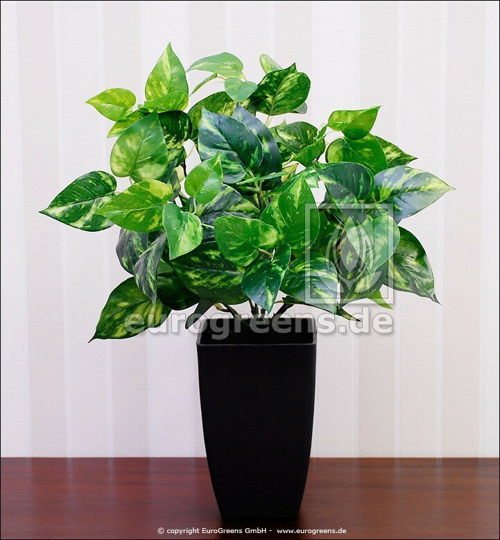 Umelá rastlina Scindapsus 40 cm