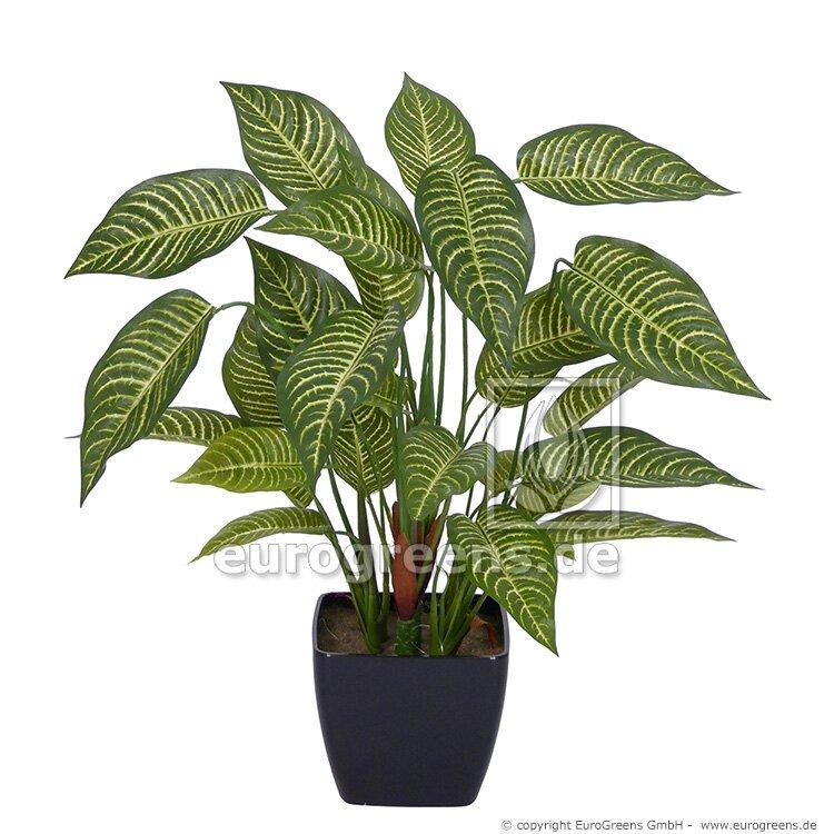 Umelá rastlina Aphelandra 50 cm