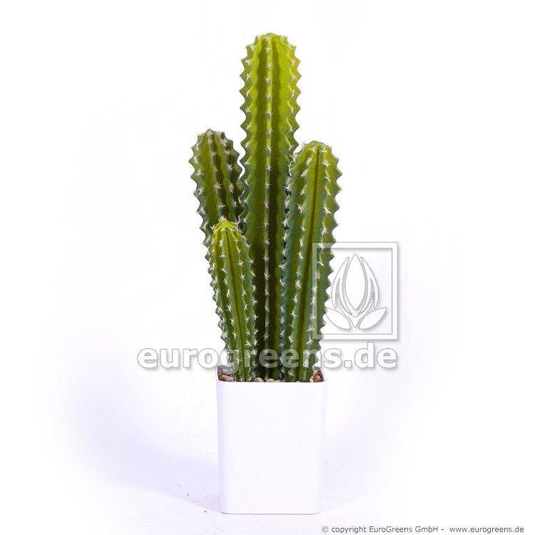 Umělý kaktus - sloupový 55 cm