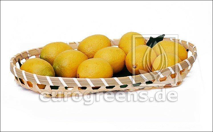 Umělý citron - košík není součástí dodávky