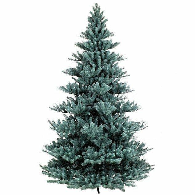 Umelý vianočný stromček Modrá Jedľa Pomeroy 300 cm