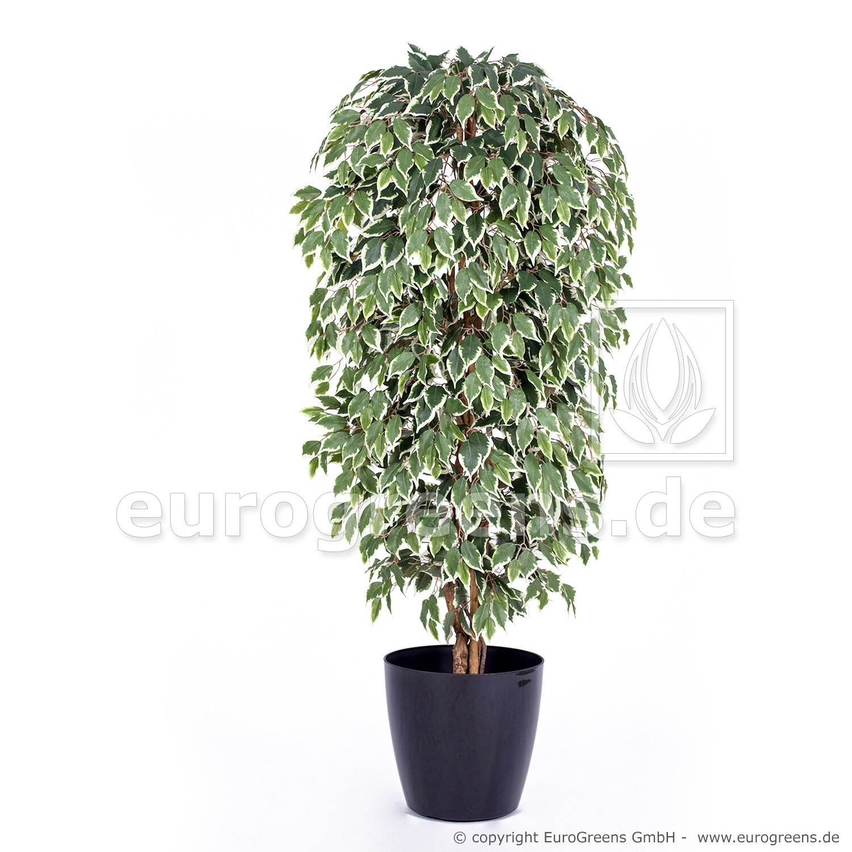 Umělá rostlina Fíkus Exotica 180 cm