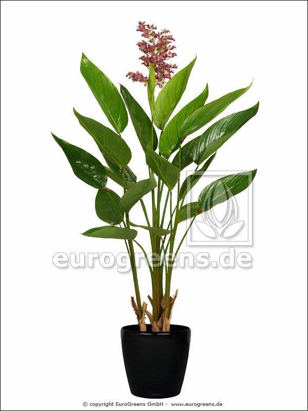 Umělá rostlina Pontedéria 130 cm