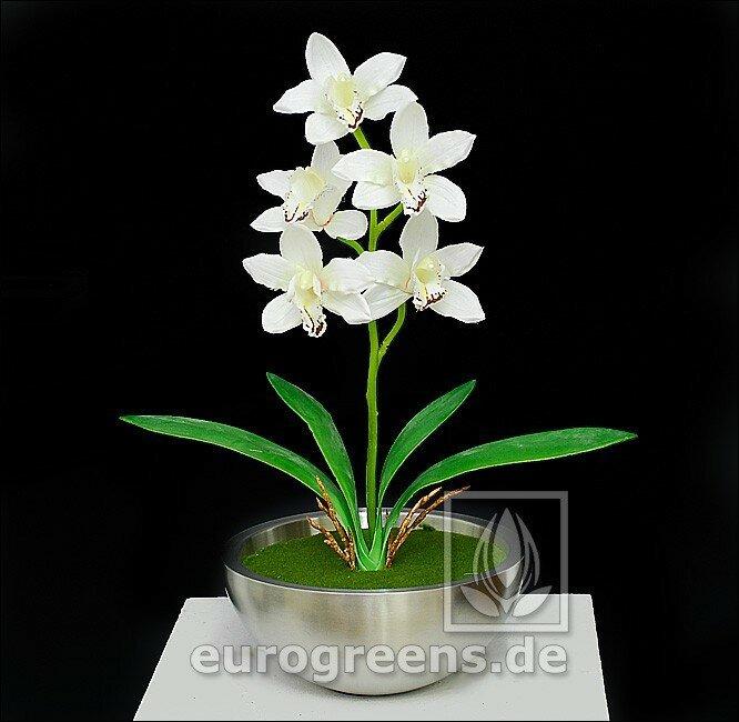 Umelá rastlina Orchidea Cymbidium krémová 50 cm