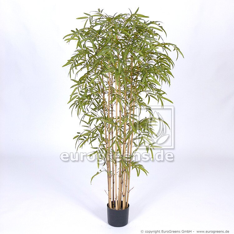Umelá rastlina Japonský Bambus prírodný kmeň 150 cm