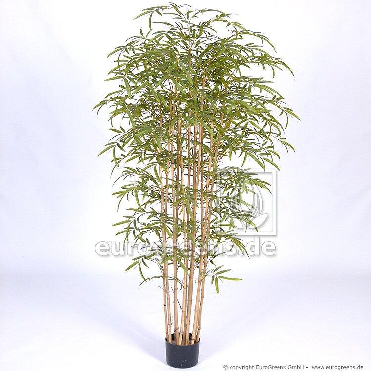 Umelá rastlina Japonský Bambus prírodný kmeň 180 cm