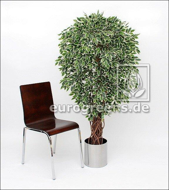 Umělá rostlina Fíkus Liane 150 cm