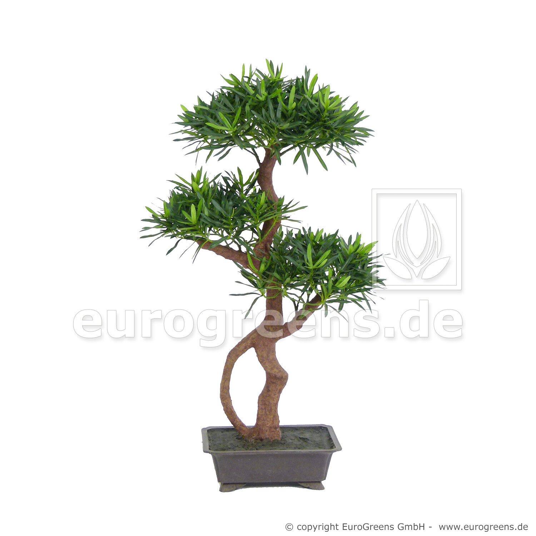 Umelý strom Podocarpus 85 cm