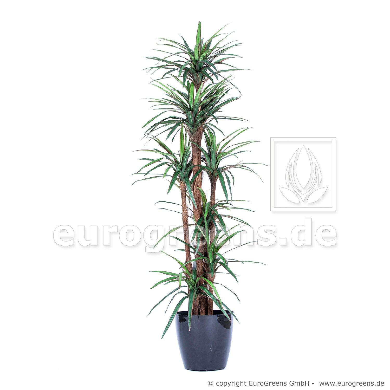 Umelá rastlina Dracéna Marginata 200 cm