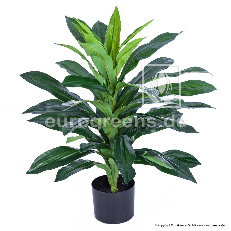 Umelá rastlina Dracéna 70 cm
