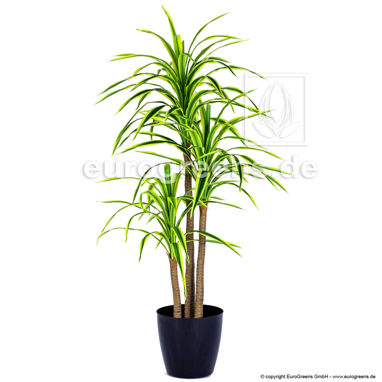 Umělá rostlina Dracena lemovaná 190 cm