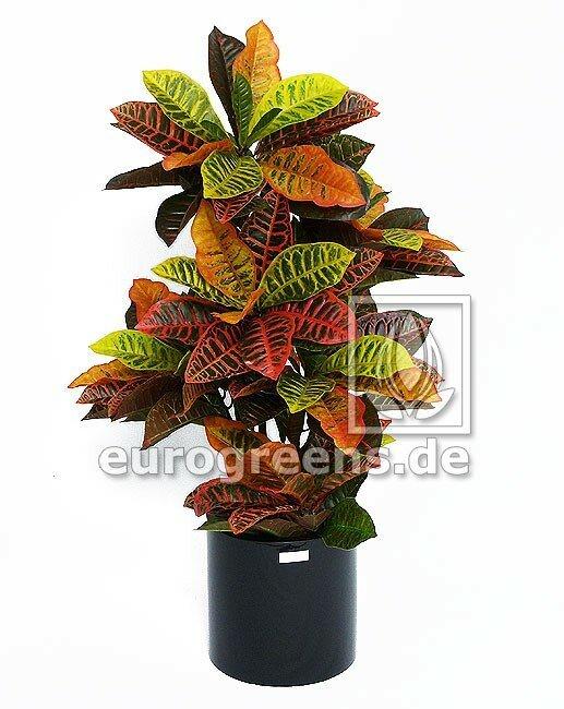 Umelá rastlina Krotónovec strakatý 90 cm