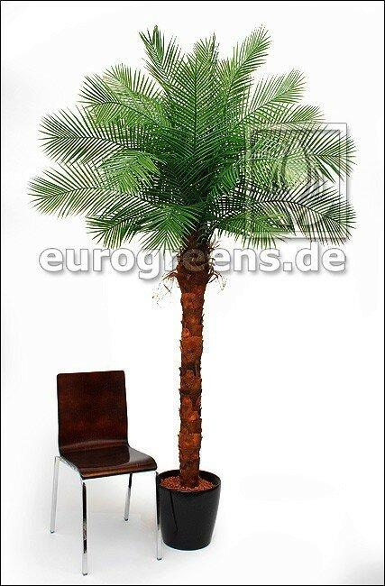Umělá palma Phoenix 240 cm