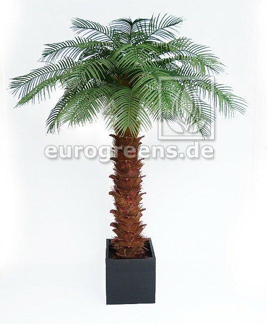Umělá palma olejná 240 cm