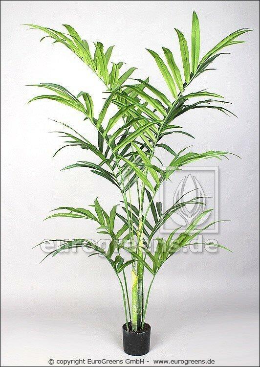 Umelá palma Kentia 180 cm