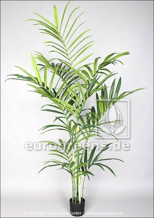 Umělá palma kent 220 cm