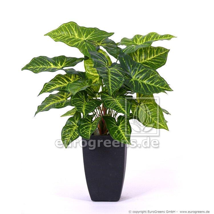 Umělá rostlina Nephthytis 40 cm