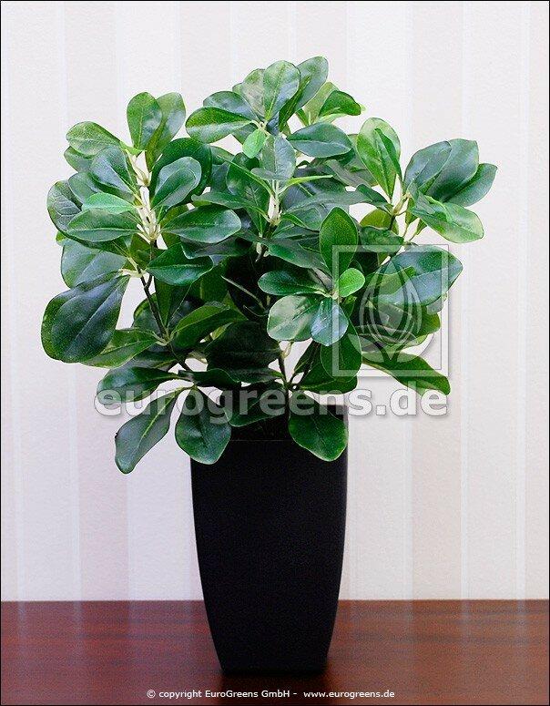 Umělá rostlina Prunus 40 cm