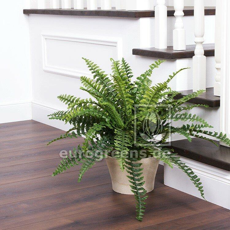 Umelá rastlina Kráľovská papraď 60 cm