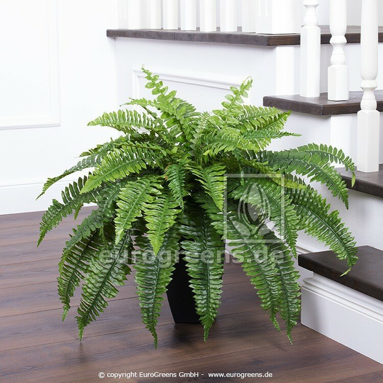 Umelá rastlina Papraď Boston 90 cm