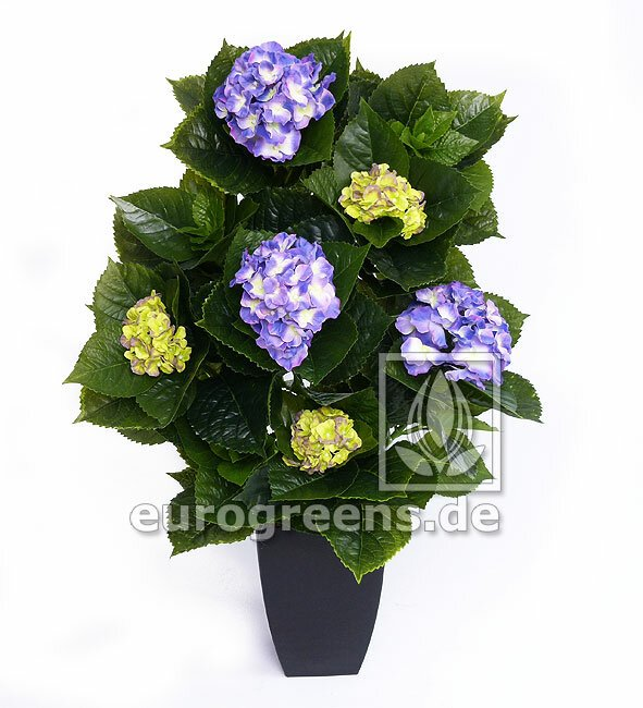 Umelá kvitnúca Hortenzia Deluxe -  modro zelená  80cm