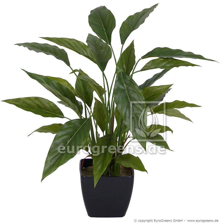 Umělá rostlina Spathiphyllum 50 cm