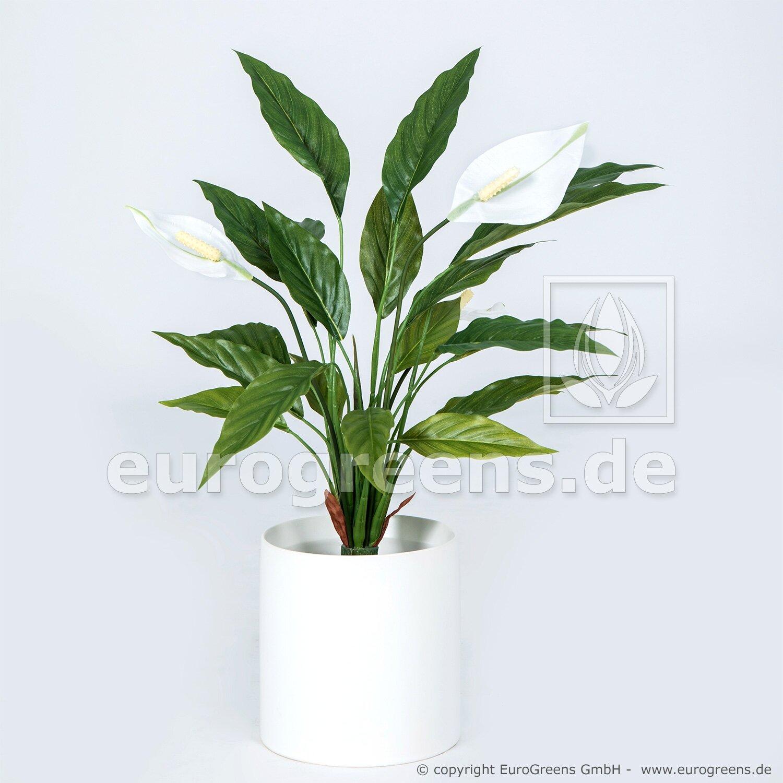 Umelú rastlina Lopatkovec 50 cm