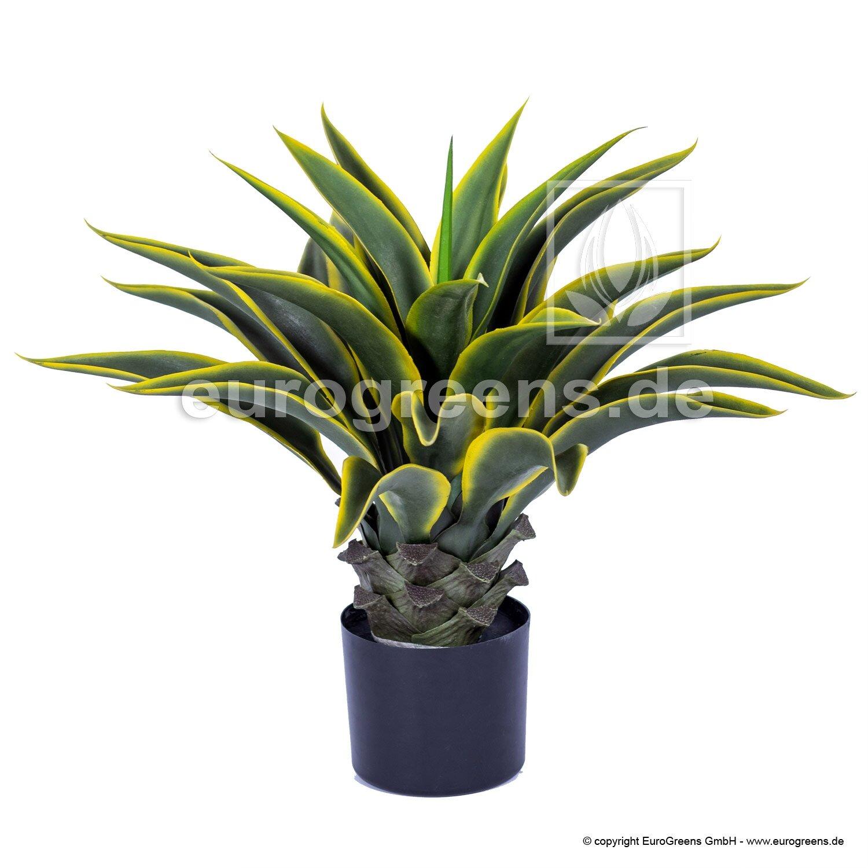 Umelá rastlina Agáva zeleno-žltá 55 cm