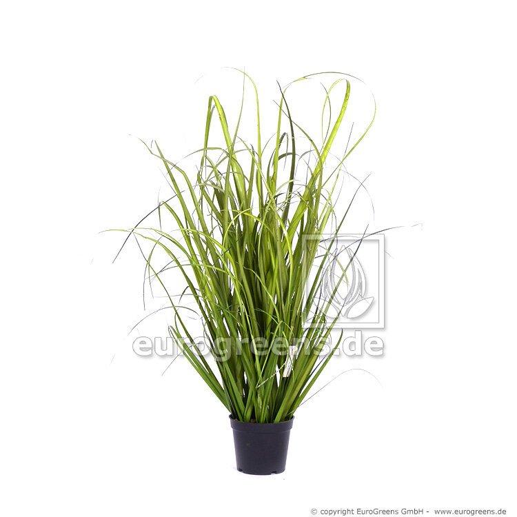 Umělá rostlina třtina 50-60 cm