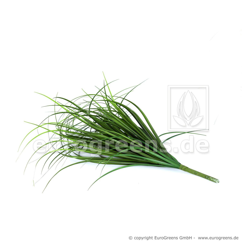Umelá trstinová tráva 60 cm