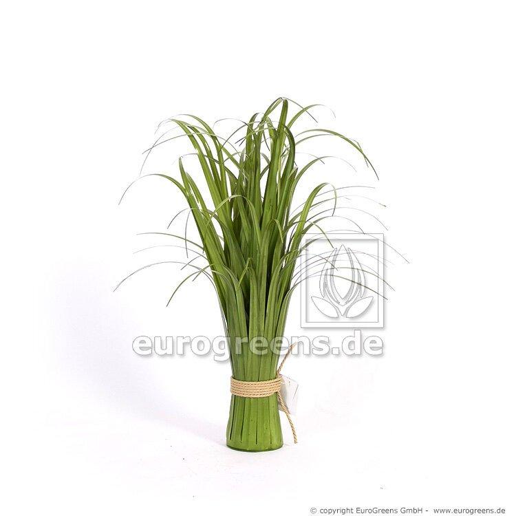 Umělá třtinová tráva 70 cm