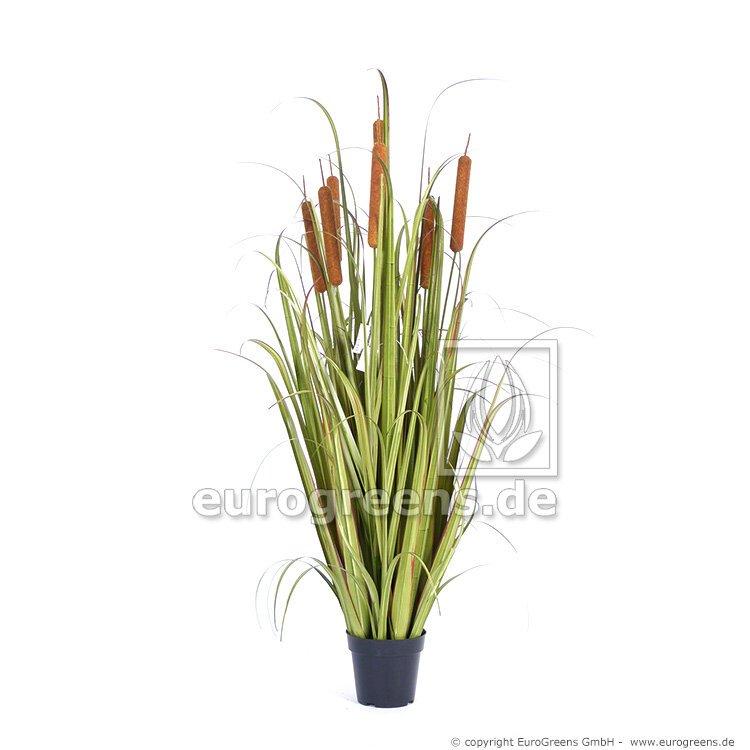 Umelá rastlina Pálka Cattails v kvetináči 140 cm