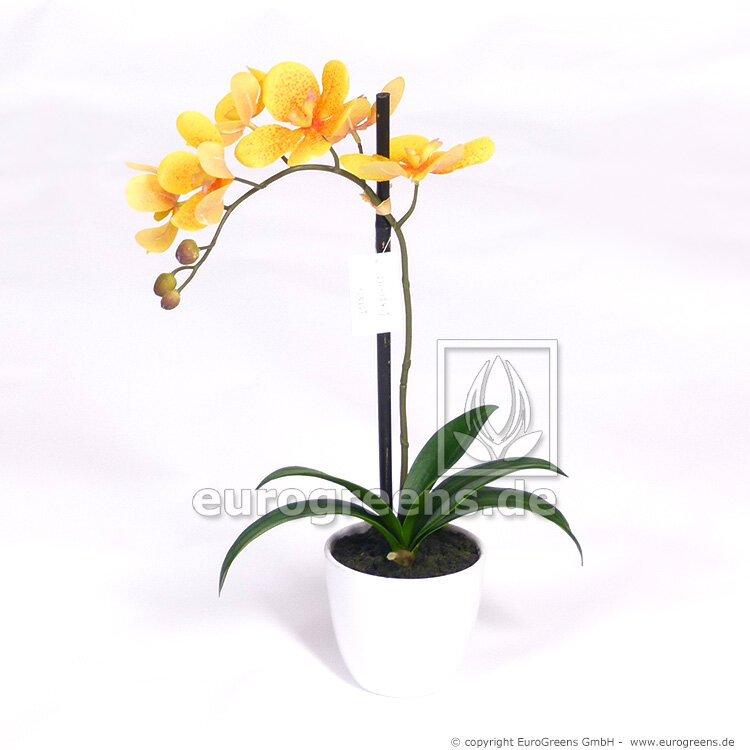 Umělá žlutá Orchidea v bílém květináči 50 cm
