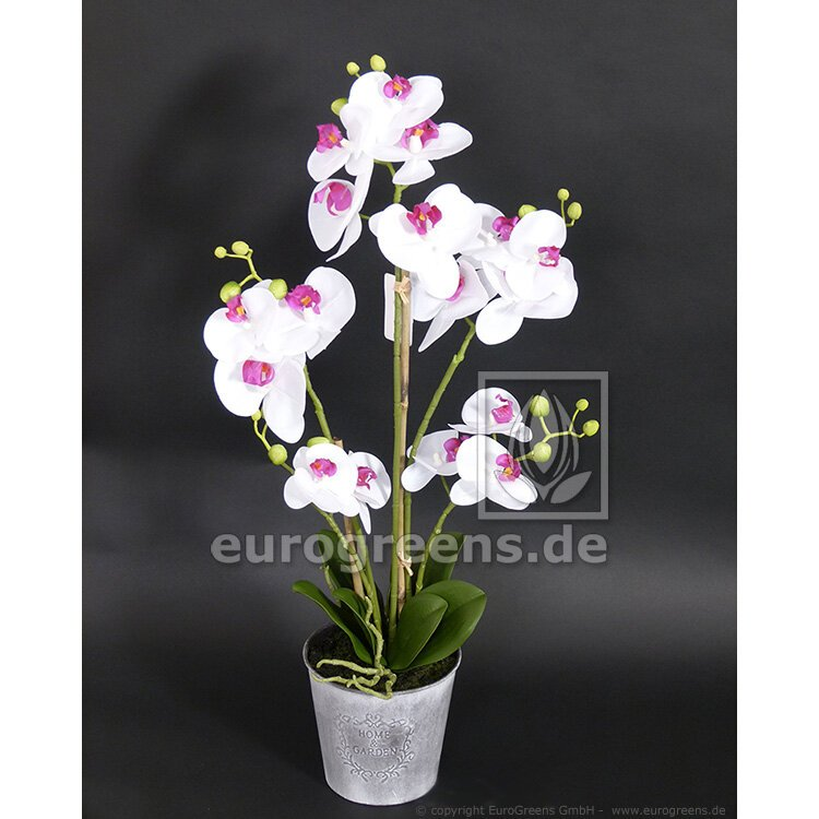 Umelá rastlina Orchidea bielo-fialová