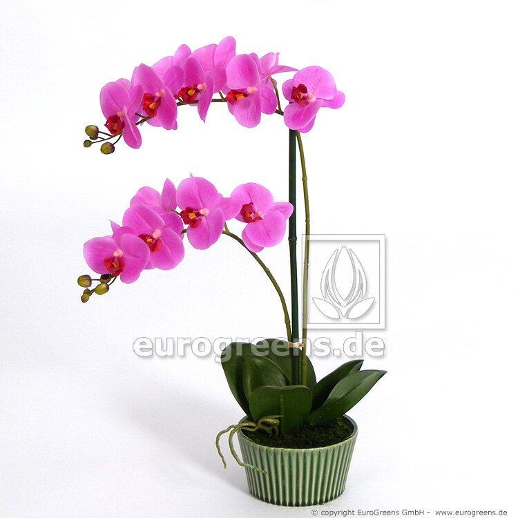 Umělá rostlina Orchidej růžová 65 cm