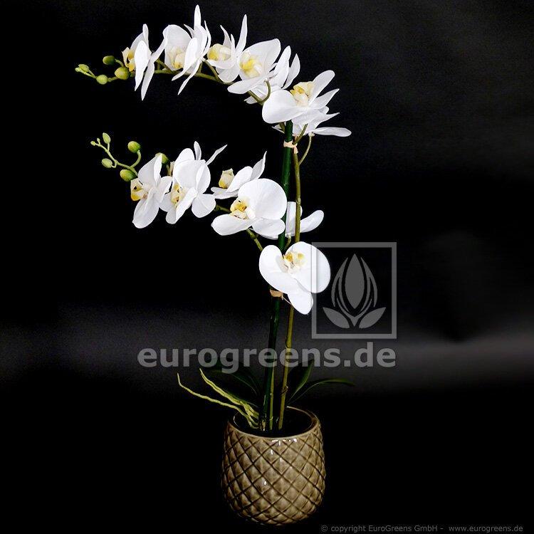 Umelá rastlina Orchidea biela 65 cm
