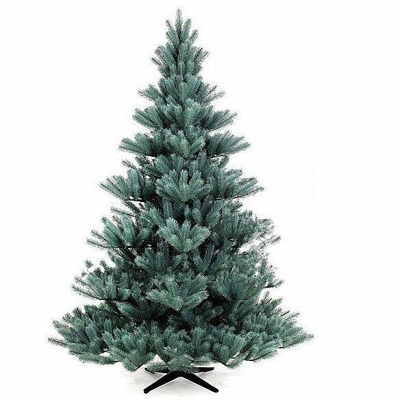 Umělý vánoční stromek Modrá Jedle Pomeroy 200 cm