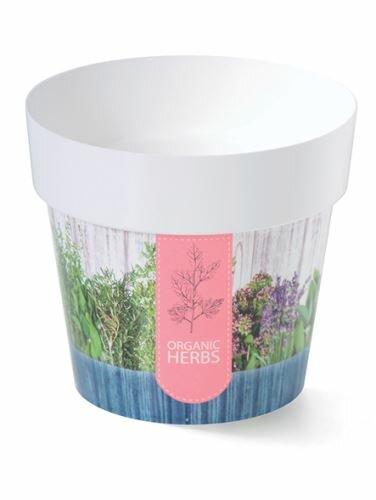 Květináč IML bylinky H2, 16cm