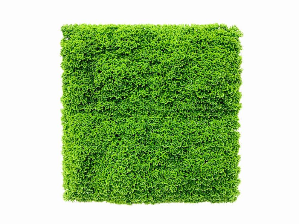 Umelý svetlo zelený machový panel Moswand - 50x50 cm