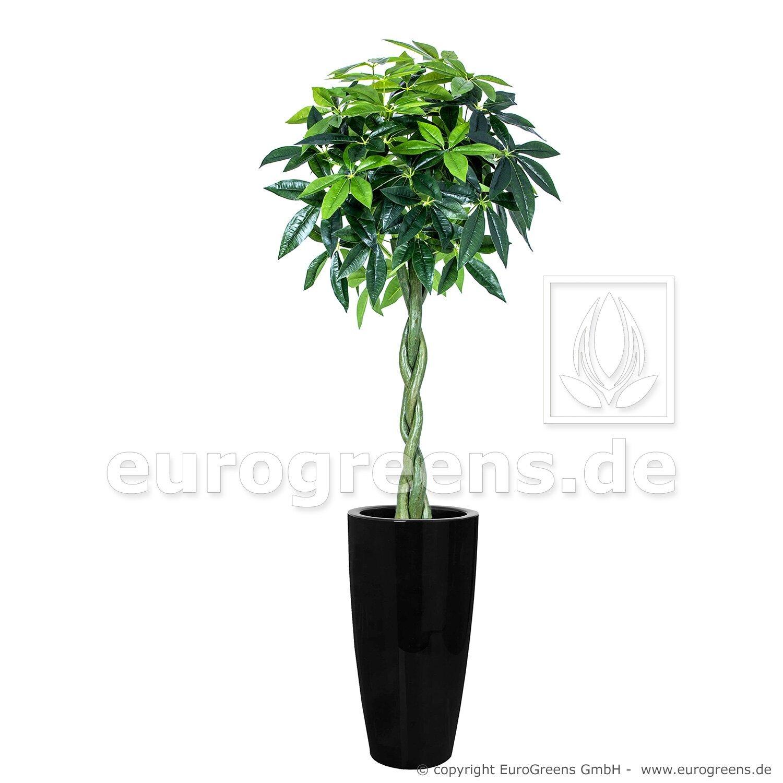 Umelý strom Pachira 150 cm