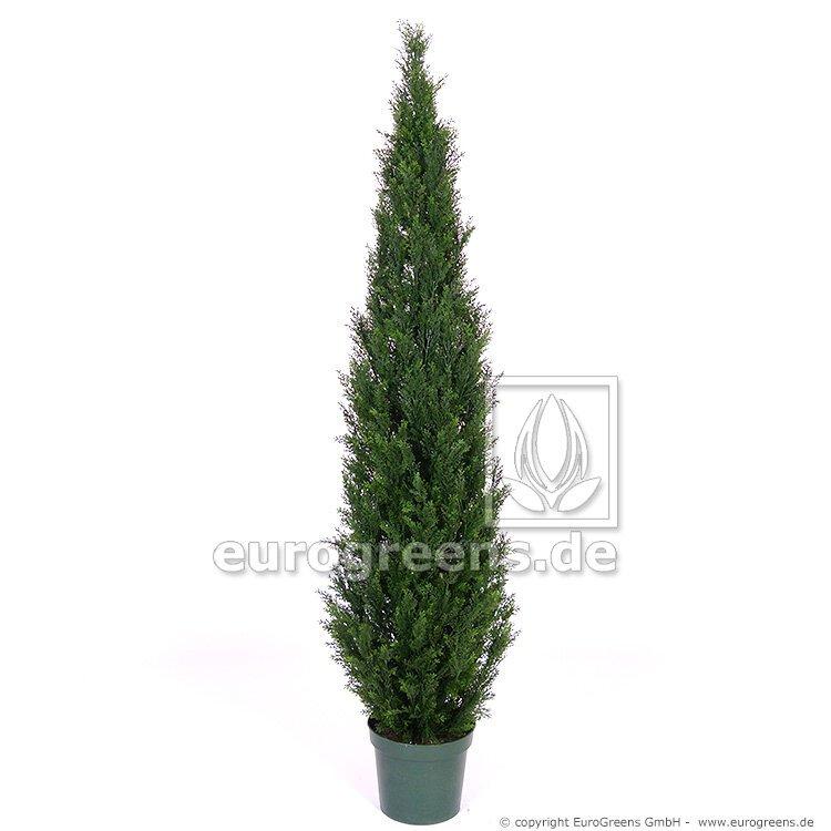 Umělý strom Cypřišek tujovitý 240 cm