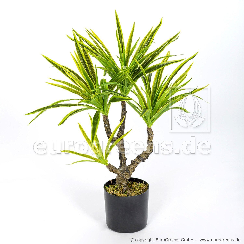 Umělá rostlina Dracena Mini 55 cm