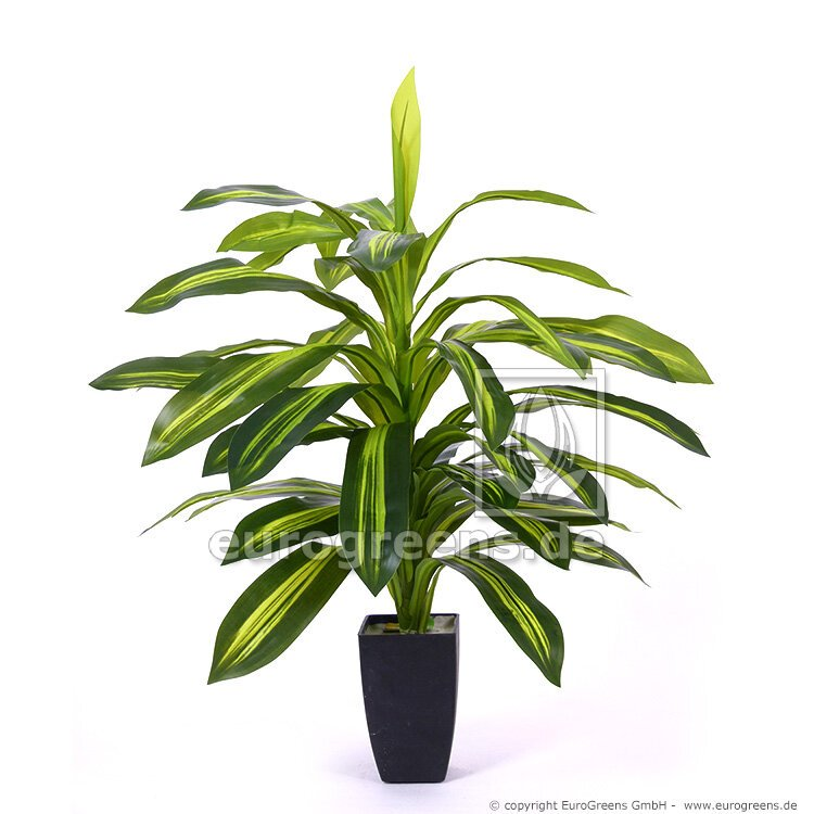 Umelá rastlina Dracéna 85 cm