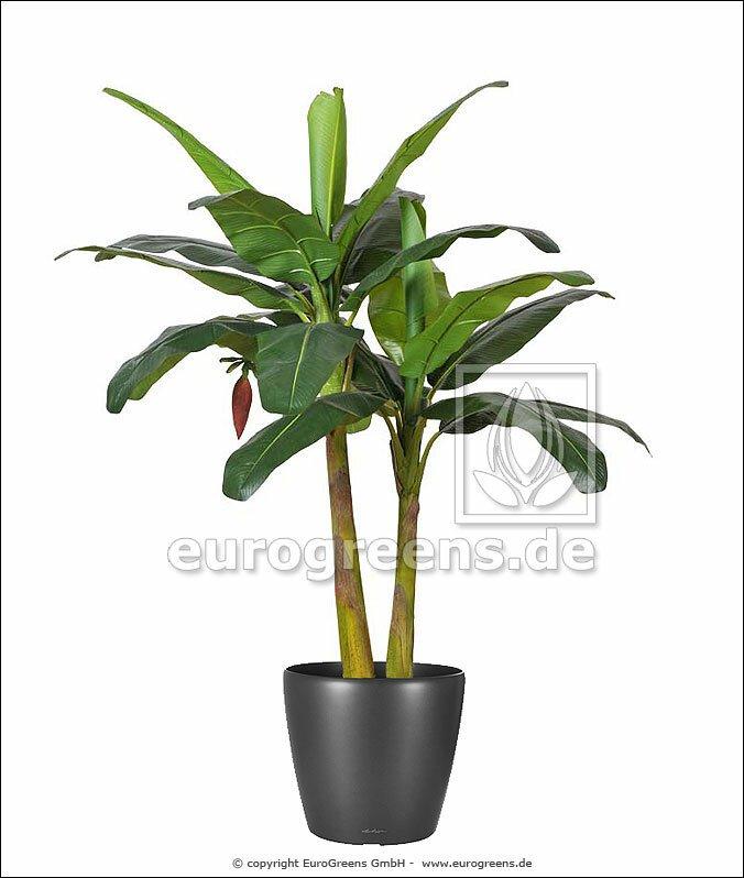 Umelá rastlina Banánovník 190 cm